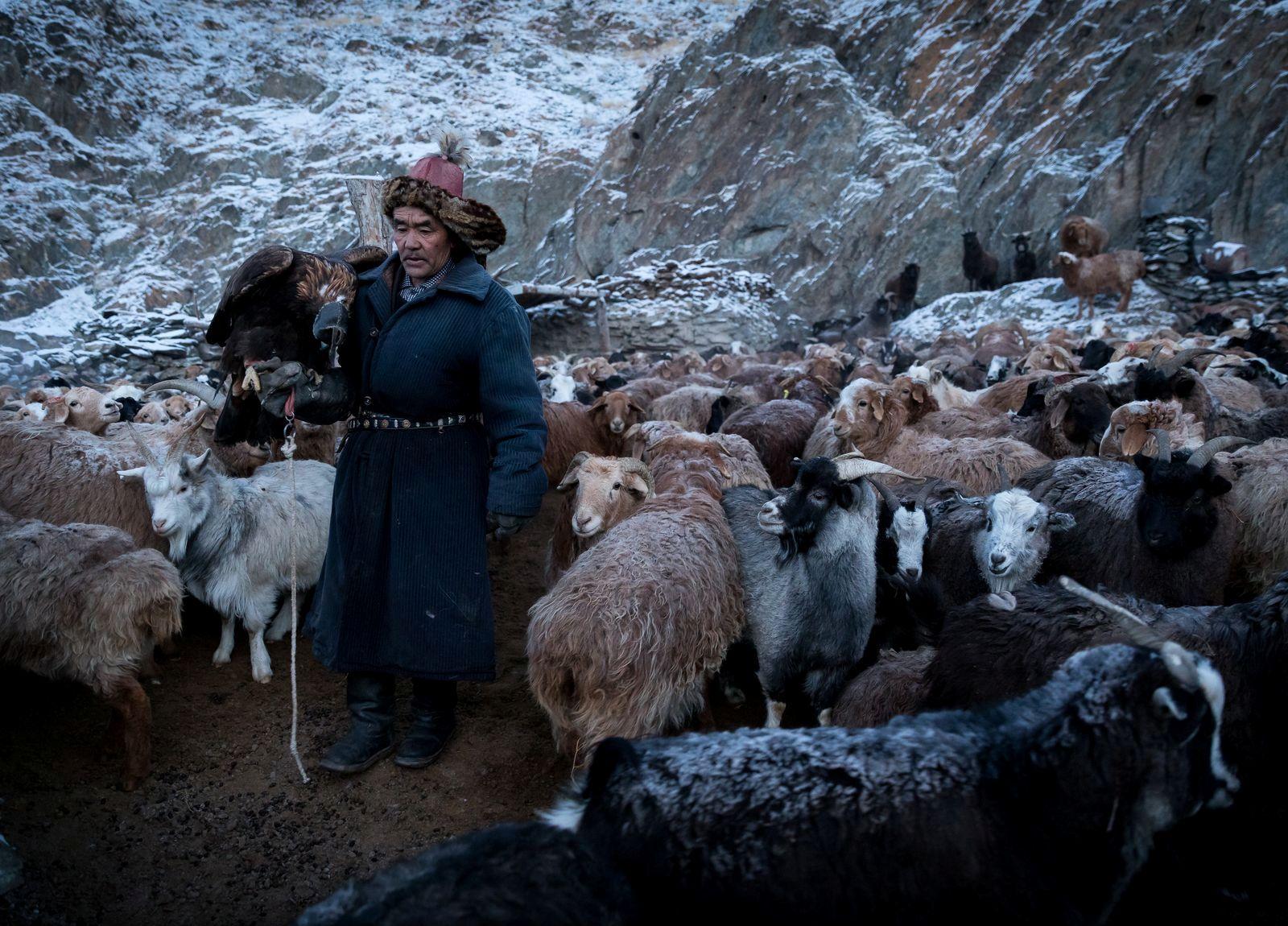 1__hamgardi_MONGOLIAN KAZAKH NOMAD
