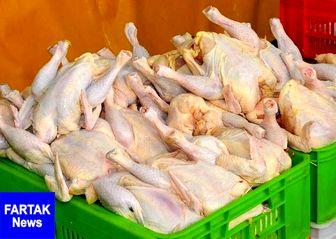 قیمت مرغ از 11 هزار تومان گذشت
