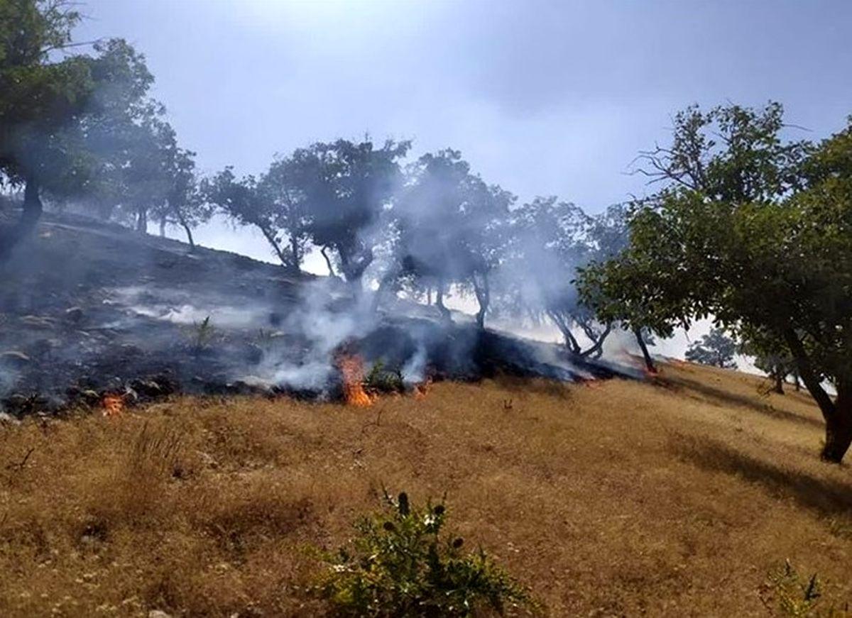 لهیب شعلههای آتش در ارتفاعات «هرم» لارستان