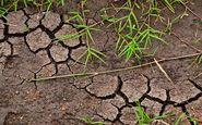 پیشبینی افزایش ۱۰ تا ۱۵ درصدی اجرای طرحهای آب و خاک در سال ۹۹