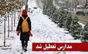 مدارس ابتدایی در تمام شهرستانهای استان البرز تعطیل شد