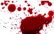 سقوط مرگبار دزد فراری از دست پلیس