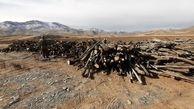 کشف 35 تن چوب بید خودرو در سنقر