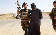 تروریست داعشی در سامراء دستگیر شد