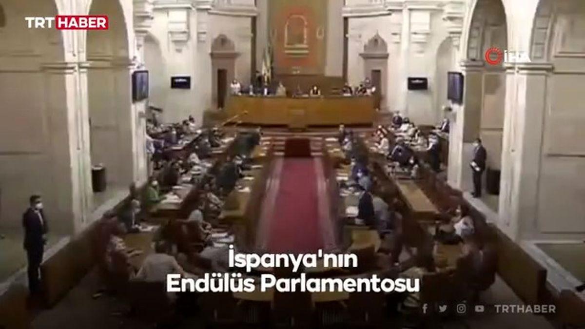 موش بزرگ در مجلس اندلس/ زنها پا به فرار گذاشتند/فیلم