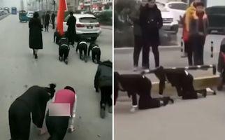 چهار دست و پا راه بردن کارمندان زن در خیابان! +فیلم