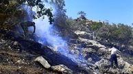 آتش به جان جنگل های رامسر افتاد