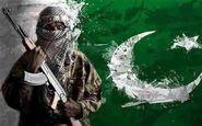 چرا خاک پاکستان برای تروریست ها امن است