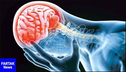 مرگ سلولهای مغزی +علائم و پیشگیری از آن