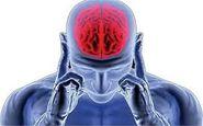 5 راه برای ورزش دادن مغزتان