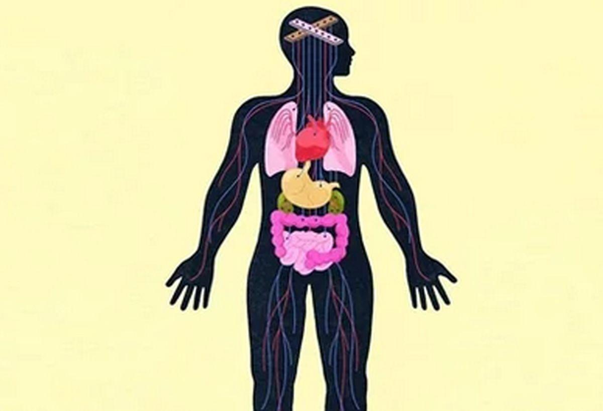 تاثیرات ویرانگر افسردگی و اضطراب بر بدن