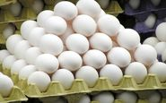 تخم مرغ بیشترین افزایش قیمت سالیانه را در سال 96 داشت