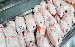 تداوم مبارزه با متخلفان عرضه مرغ در بازار