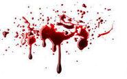 قتل یک وکیل دادگستری در کامرانیه