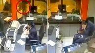 سقوط یک گربه ولگرد بانک را بهم ریخت! +فیلم
