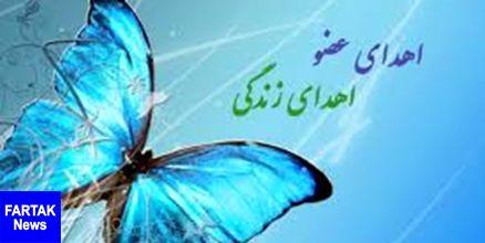 چهارمحال و بختیاری پیشرو در اهدای عضو/بخشش 32 خانواده استان در سال 98