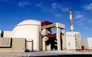 نیروگاه بوشهر از خطر زلزله در امان ماند