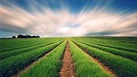 هشدار جدی سازمان هواشناسی به کشاورزان