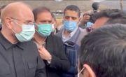رئیس مجلس از طرح زنجیره فولاد بیجار بازدید کرد