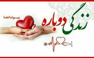 خبر خوب برای کرمانشاهیان؛ عمل پیوند قلب از سال آینده اجرایی می شود