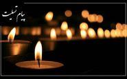 پیام تسلیت رییس سازمان محیط زیست در پی شهادت پاسدار احسان عزیزی