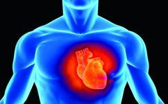 اثرات استرس محیطی بر بافت معمول و غیرمعمول قلب