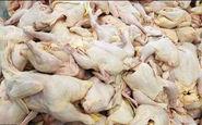 از اول فروردین ۹۸؛ صادرات گوشت مرغ ممنوع میشود