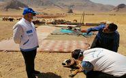 واکسیناسیون دام های شهرستان کرمانشاه بر علیه بیماری آبله از هفته آینده آغاز میشود