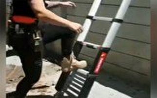 جذابترین نسل از نردبان