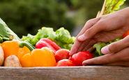 پیشگیری از آلزایمر با چند رژیم تغذیه ای