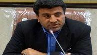 توزیع مرغ منجمد در سطح شهرستانهای استان ایلام  عادلانه نیست