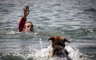 مانور سگهای جستجو و نجات جمعیت هلال احمر