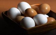 پسر جوانی که تخم مرغ میگذارد!