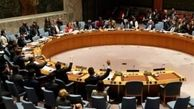 محکومیت ارتش میانمار در شورای امنیت