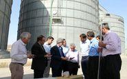  تحقق شعار رونق تولید با حمایت از بخش کشاورزی