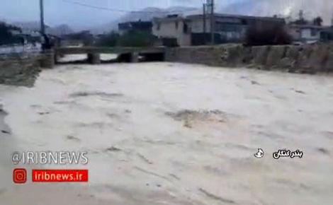 طغیان رودخانه ها در بوشهر و آسیب به خودروها و تاسیسات و منازل شخصی/فیلم