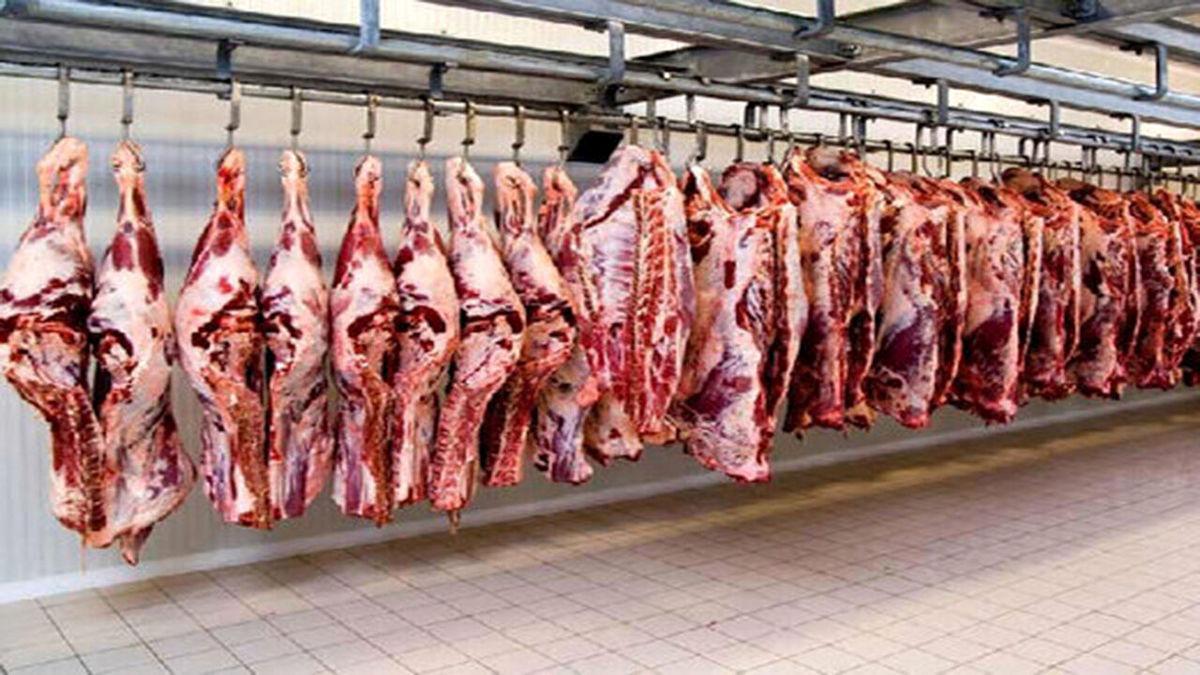 آخرین آمار از عرضه گوشت قرمز به بازار