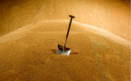روسیه عوارض صادرات گندم برای تعدیل بازار داخل دو برابر کرد