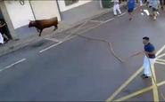 2کشته درحمله گاو وحشی به شهروندان اسپانیایی+فیلم
