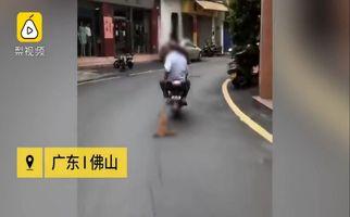 اقدام غیرانسانی و وحشیانه دو موتورسوار با سگ در خیابان!
