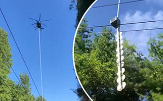 بریدن شاخههای مزاحم درختان با هلیکوپتر