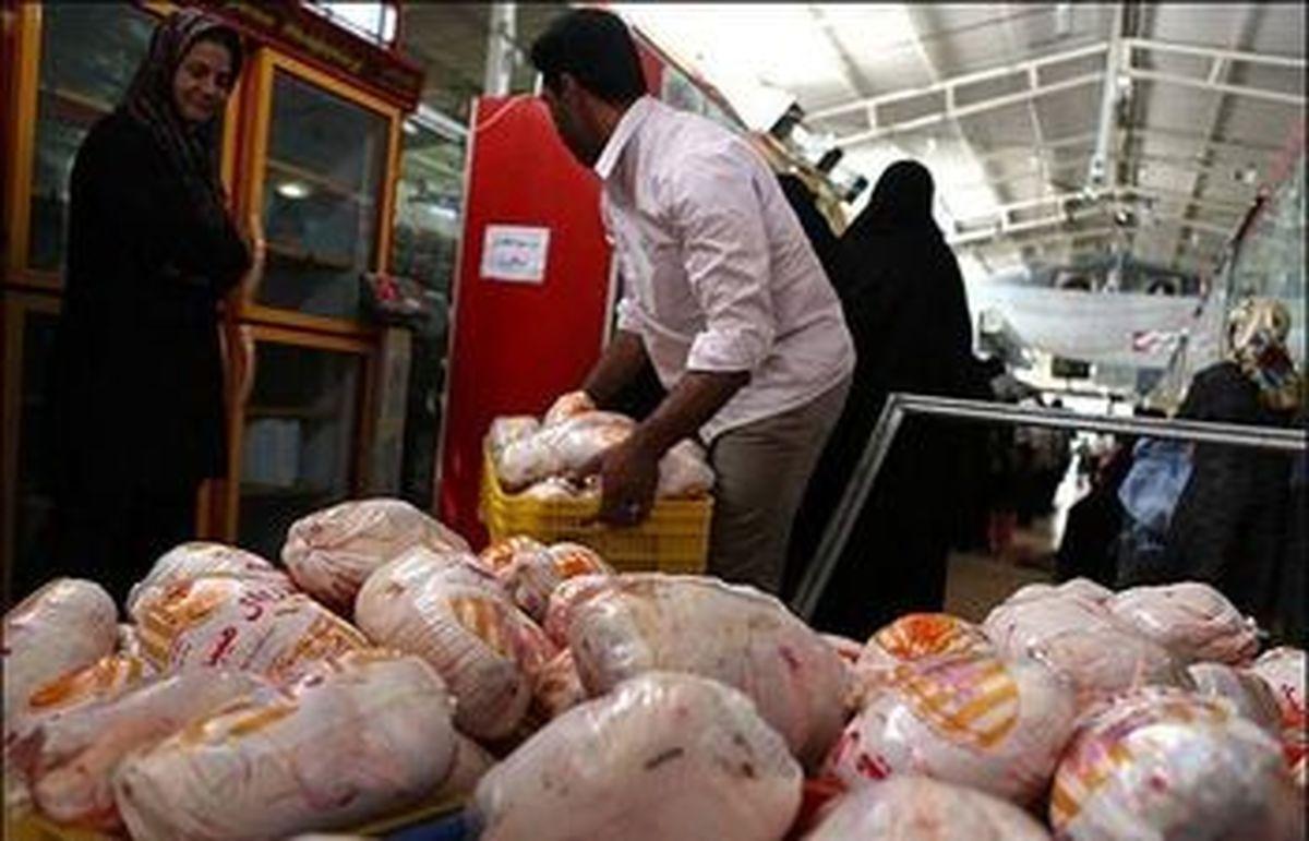 ممنوعیت خروج گوشت منجمد از این استان