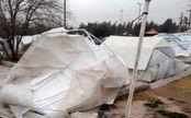 کارن 2 ماهه براثر سرما در مناطق زلزله زده کرمانشاه جان داد
