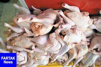 آخرین تحولات قیمت مرغ در بازار