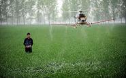 سمپاشی با استفاده از بالگرد رادیوکنترلی+فیلم