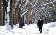 دولت ژاپن به علت شیوع کرونا در هوکایدو «وضعیت اضطراری» اعلام کرد