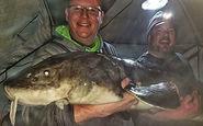 شکار ماهی خاویاری بزرگ با وزن ۵۴ کیلوگرم + فیلم