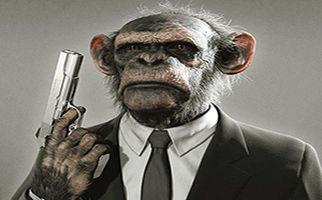 میمون اسلحه کش+فیلم