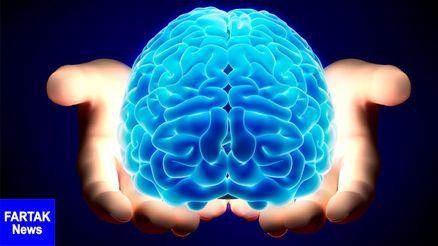 پیر شدن سریعتر مغز با کلسترول بد