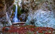 آبشار«دافارد»جیرفت